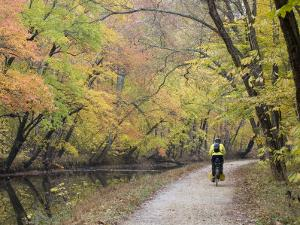 Biker on the C&O Canal Towpath Near Potomac by Skip Brown