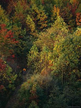 Cyclist Rides Through Fall Foliage in West Virginia by Skip Brown