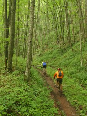 Mountain Bikers on Props Run, a Single Track Trail by Skip Brown