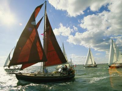 Red-Sailed Sailboat and Others in a Race on the Chesapeake Bay by Skip Brown
