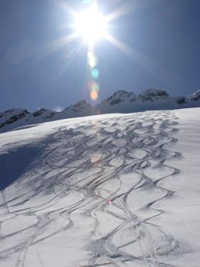 Ski Tracks in Back-Country Snow by Skip Brown