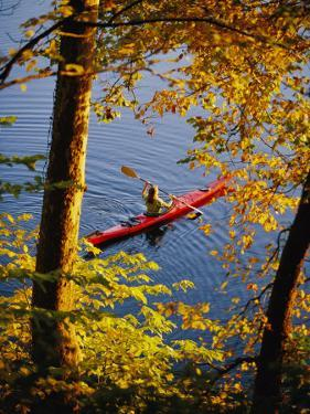 Woman Kayaking with Fall Foliage, Potomac River, Maryland by Skip Brown