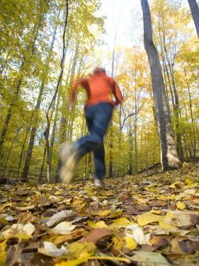 Woman Running Through Woods Near Potomac, Maryland by Skip Brown