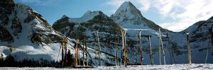 Skis in snow, Mt Assiniboine, Mt Assiniboine Provincial Park, British Columbia, Canada