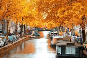 Amsterdam Autumn. Beautiful Places in Europe by Skreidzeleu