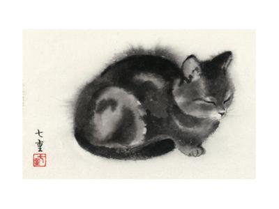Sleeping Gray Cat