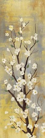 Blossoms II by Sloane Addison