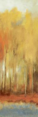 Haze I by Sloane Addison
