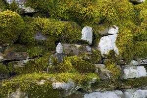 Small Buddha Sculpture on Mossy Drystone Wall, Harnham Buddhist Monastery, Northumberland, Uk