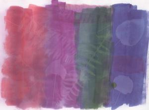 Fossil Color Splash by Smith Haynes