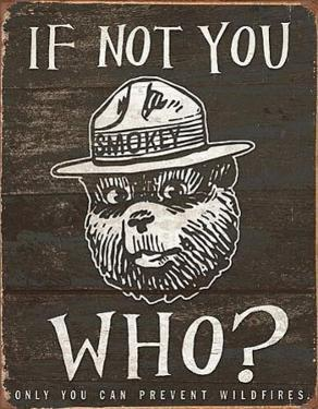 Smokey Bear - If Not You Who?