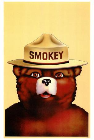 https://imgc.allpostersimages.com/img/posters/smokey-the-bear_u-L-F4S8V90.jpg?artPerspective=n
