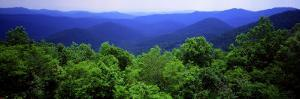 Smoky Mountain National Park, Tennessee, USA