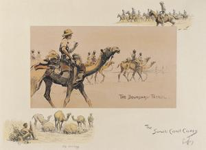 The Somali Camel Corps by Snaffles