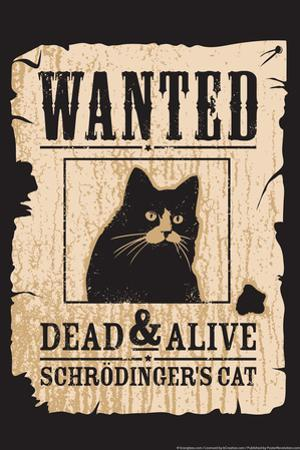 Schrodinger's Cat Snorg Tees Plastic Sign by Snorg
