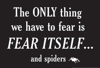 Fear Spiders by Snorg Tees