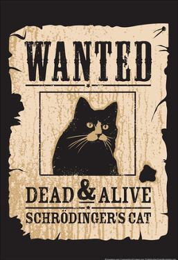 Schrodinger's Cat by Snorg Tees