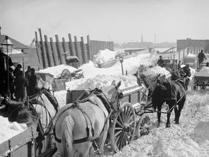 Snow Carts at the River after a Blizzard, New York