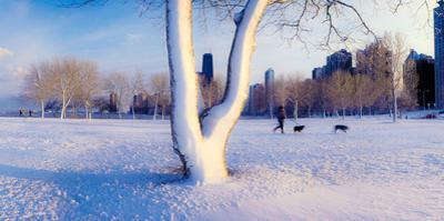 Snow covered lakefront park in winter, Chicago, Cook County, Illinois, USA