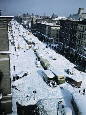 Snow Covered Street and Cars