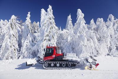 https://imgc.allpostersimages.com/img/posters/snow-groomer-schauinsland-black-forest-baden-wurttemberg-germany_u-L-Q1EY2DF0.jpg?artPerspective=n