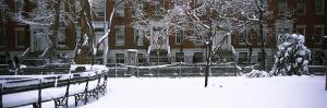 Snowcapped Benches in a Park, Washington Square Park, Manhattan, New York, USA