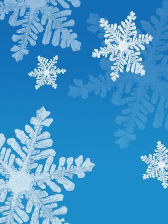 https://imgc.allpostersimages.com/img/posters/snowflakes_u-L-Q10P98R0.jpg?artPerspective=n