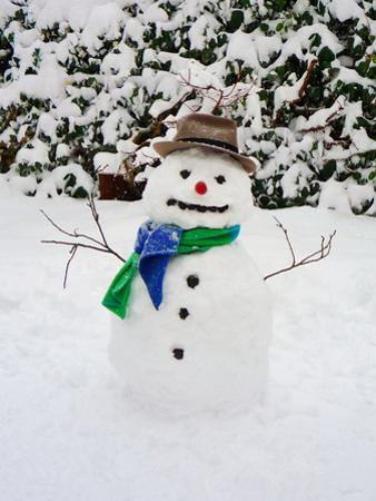 Snowman with Scarf and Hat in Winter Scene