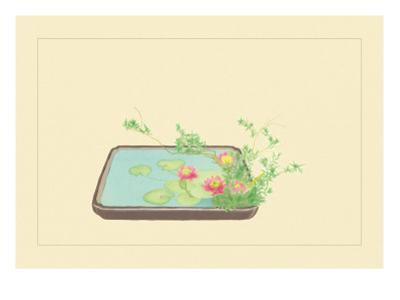 Spiraea Thumbergu and Water Lily