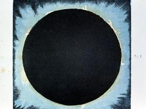 Solar Corona and Prominences 1860