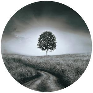 Solitude - Circular Canvas Giclee Printed on 2 - Wood Stretcher Wall Art