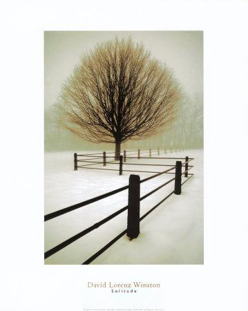 https://imgc.allpostersimages.com/img/posters/solitude_u-L-EHP440.jpg?p=0