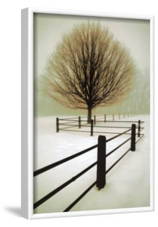 Solitude-David Winston-Framed Art Print
