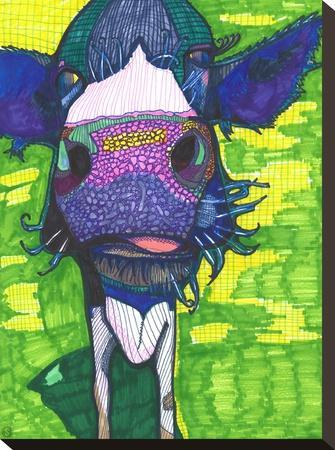 Cow In Face by Solveig Studio
