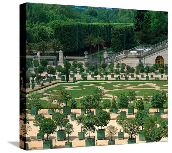 Somptuous Garden II--Stretched Canvas Print