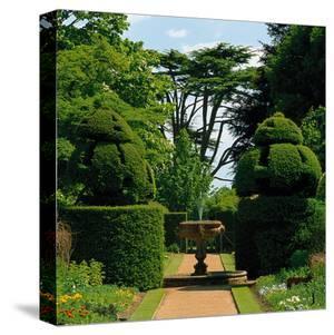 Somptuous Garden IX