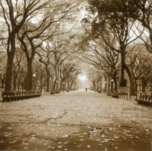 Central Park by Sondra Wampler