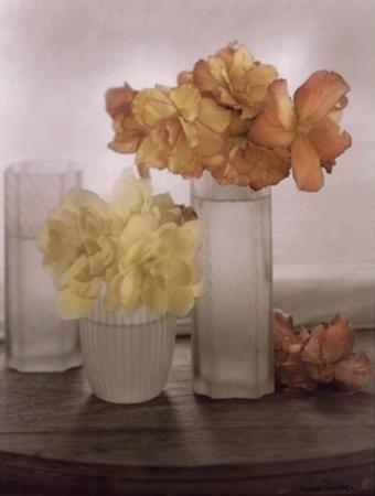 Frosted Glass Vases IV by Sondra Wampler