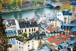 Paris Rooftops by Sonja Quintero