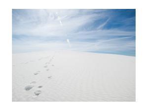 White Dunes I by Sonja Quintero