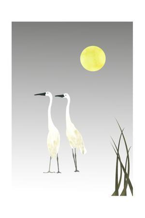 Birds by sooyo