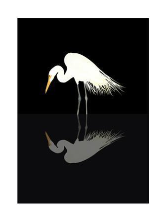 Great Egret by sooyo