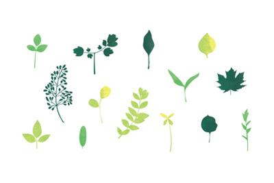 Leaves by sooyo