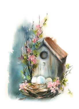 Bird House by Sophia Rodionov