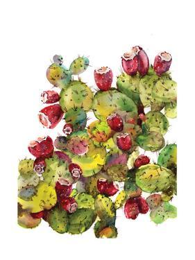 Cactus by Sophia Rodionov