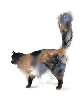 Cat Time by Sophia Rodionov
