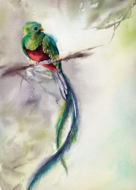 Exotic II by Sophia Rodionov