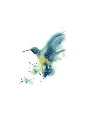 Hummingbird by Sophia Rodionov