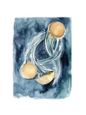 Jellyfish II by Sophia Rodionov