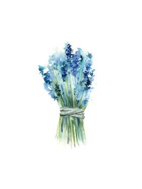 Lavender II by Sophia Rodionov